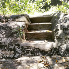 Steps down into the swimming pool designed by Mme. Modjeska's son.
