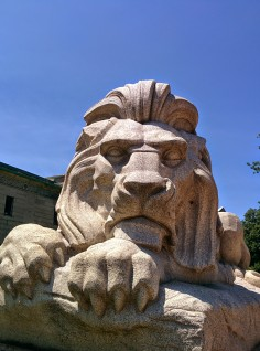 Oak Grove Cemetery lion